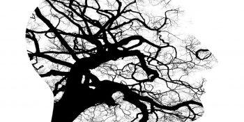 Badania psychologiczne / PSYCHTECHNIKA